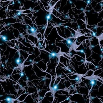 Mô hình tế bào não bộ. (Ảnh: Shutterstock)