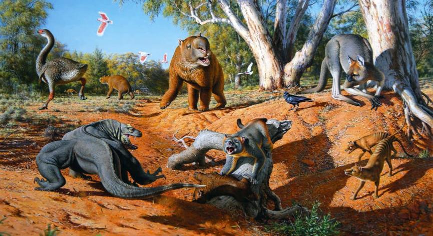 megafauna1